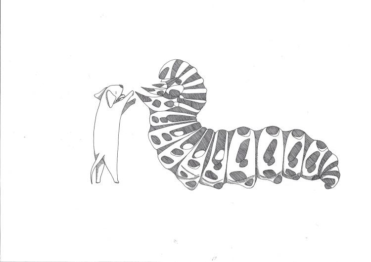 DAGS! disegno di Salaparto